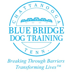 Blue Bridge Dog Training