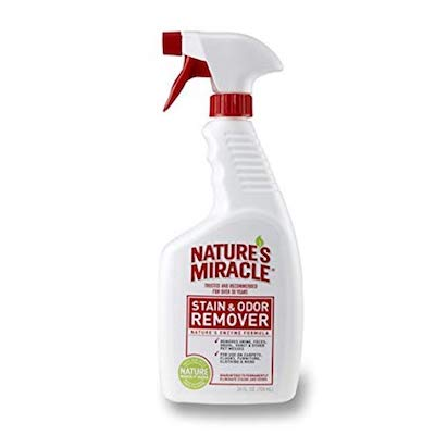 Natures Miracle Stain & Odor Remover ---------- (BUY IT FROM AMAZON)